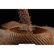 Продукция сельскохозяйственная Ташкент фото