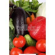 Продукция сельскохозяйственная фото