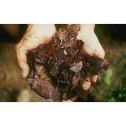 Удобрения биологические для растений фото