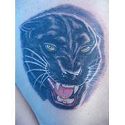 Нанесение татуировок фото