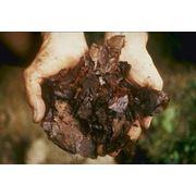 Катализаторы разложения органических веществ фото