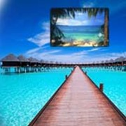 Отдых Туры Путешествия - Бали фото