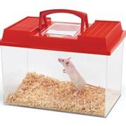 Террариум Savic Fauna Box, 6 л. фото