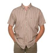 Рубашка мужская летняя 01 фото