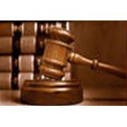 Государственное и административное право (в тч налоговое и таможенное право) фотография
