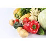 Пищевая продукция - плодоовощная. фото