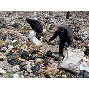 События после массовой уборки фото