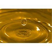 Перевозка биодизельного топлива / пищевого масла фото