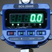 Весы крановые электронные ВСК-B от 2х тонн фото