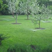 Автоматический полив сада и огорода, Системы полива фото