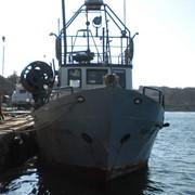 Продам (сдам в аренду) рыболовное судно фото