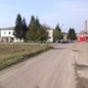 Постройки фермерские, комплекс, свиноферма, Киевская область фото