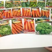 Семена овощной культуры фото