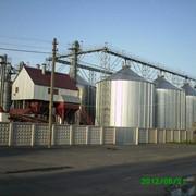 Строительство комплексов по очистке зерновых, мелкосемянных и других культур фото
