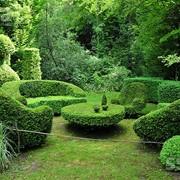 Благоустройство сада в Молдове, быстро, качественно, недорого! фото