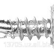 Cаморез оцинкованный семечки фото