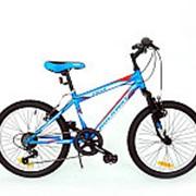 Велосипед горный rockway tiger 204004r/03 фото