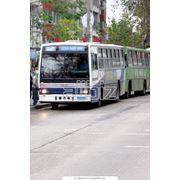 Реклама на транспорт фото