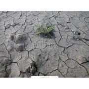 Исследования и консалтинг по анализу грунтов и почв фото