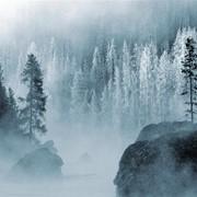 Сосиски замороженные фото