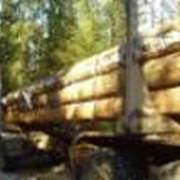 Манипулятор для погрузки леса фото