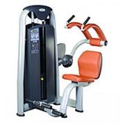 Тренажер профессиональный V-Sport В-Спорт N-110 тренажёр для мышц брюшного пресса фото