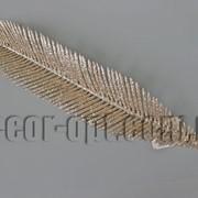 Лист пальмы голограмма 49/60 см 4337 фото