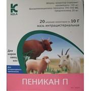 Препарат ветеринарный Пеникан П фото