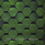 SHINGLAS ФИНСКАЯ Зеленый фото