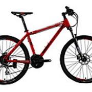 Велосипед горный CRONUS Rover 310 фото