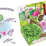 Сад принцессы Живая открытка Happy Plant наборы для выращивания фото