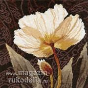Набор для вышивания Белые цветы. Залитый светом фото