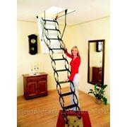 Чердачная лестница OMAN (ножничная) 70х130х290см фото