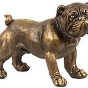 Скульптура Французский бульдог / Собака 42х16х18см. арт.МК1056 фото