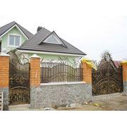 Забор кованый с поликарбонатом ZK 0006 фото