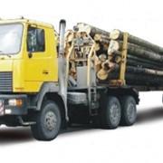 Лесовоз МАЗ-641808-220-011 фото