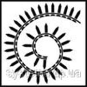 Шуруп Fermacell в ленте 3,9 x 30 мм, 1000 шт. фото