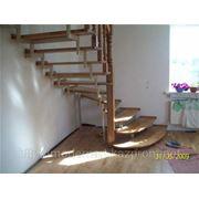 Лестницы позвоночные фото