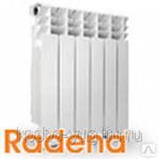 Радиатор алюминиевый RADENA 350х80 (1секций) фото