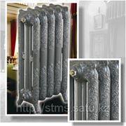 Чугунный радиатор Floreal фото
