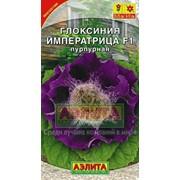 Семена Глоксиния гибридная Императрица пурпурная F1 Ц/П фото