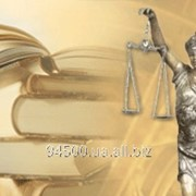 Юридические услуги Софиевка фото