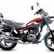 Мотоциклы Allegator YH125-RC1 фото