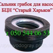 Сальник-грибок для насоса БЦН Старый Харьков фото