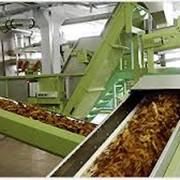 Оборудование для табачной промышленности фото