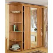 Шкафы-купе на заказ любой сложности и размеров по индивидуальным проектам фото
