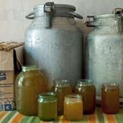 Мёд разнотравье с донником фото