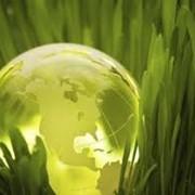 Экологический аудит. фото