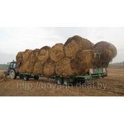 Платформа транспортировки кормов ПТК-10-3 фото