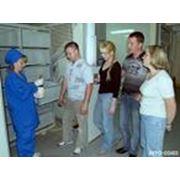 Выдача рекомендаций по содержанию и выращиванию птицы в клеточном оборудовании завода фото